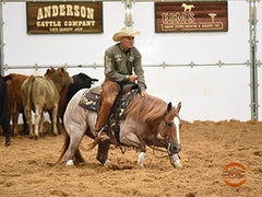 clint allen ncha hall of fame rider