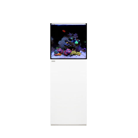 WaterBox Marine Aquariums