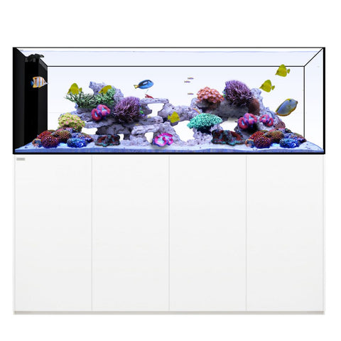 Waterbox Aquariums Penninsula 228 gallons