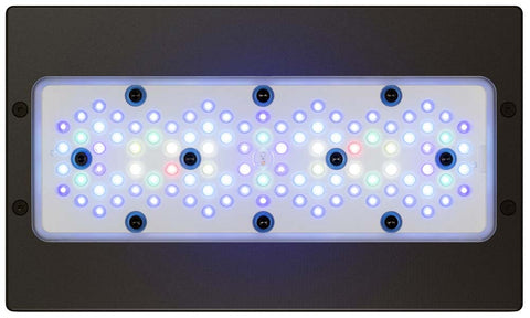Radion XR30 Gen 5 Blue LED Light Fixture