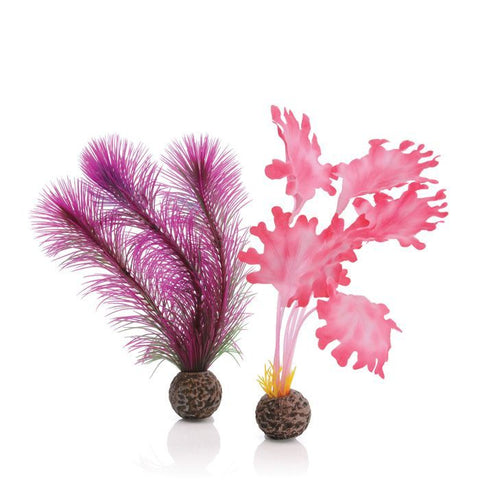 BiOrb Aquarium Kelp Set, Pink, Small 2 Pack