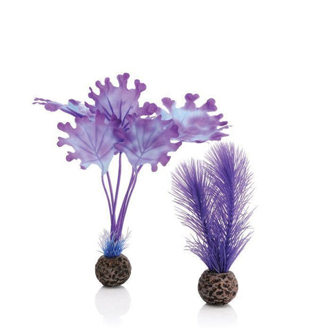 BiOrb Aquarium Kelp Set, Purple, Small 2 Pack