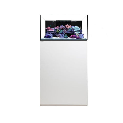 Waterbox Platinum 45 gallon Frag Aquarium