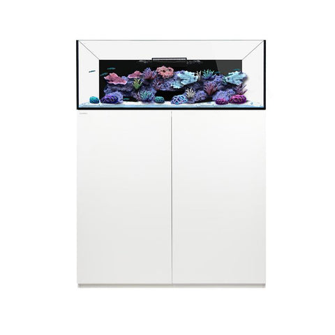 Waterbox Platinum 60 gallons Frag Aquarium