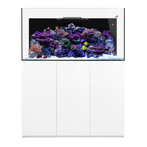 Waterbox Platinum PRO 170 gallons Aquarium