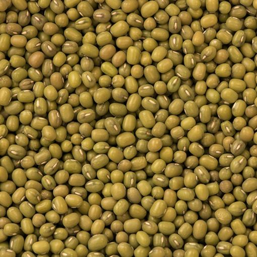 Organic Mung Beans | Woodstock Farms