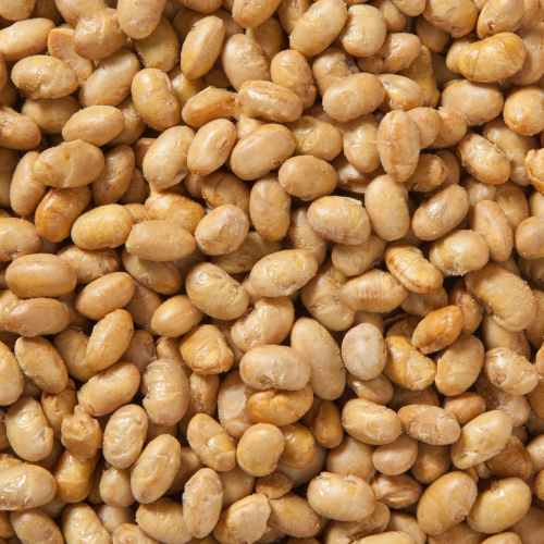 Organic Dry Roasted Soy Nuts | Woodstock Farms