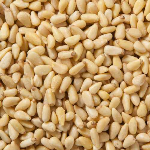 Pine Nuts | Pignolia | Woodstock Farms