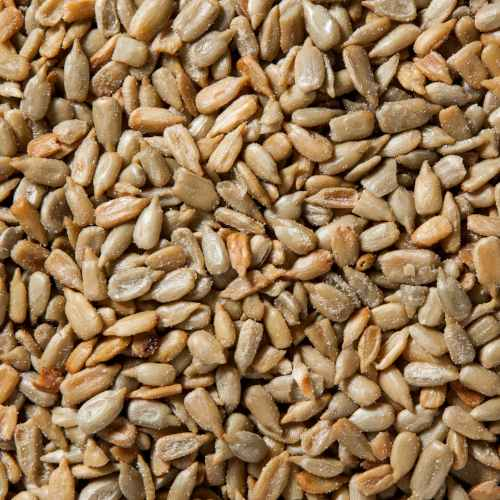 Sunflower Seeds Roasted No Shell | Woodstock Farms