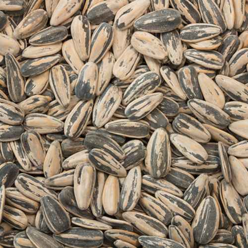 Sunflower Seeds Dry Roasted & Salted (in shell) | Woodstock Farms