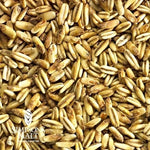 Golden Naked Oats - Simpsons - Homebrew Supplies in Vermont