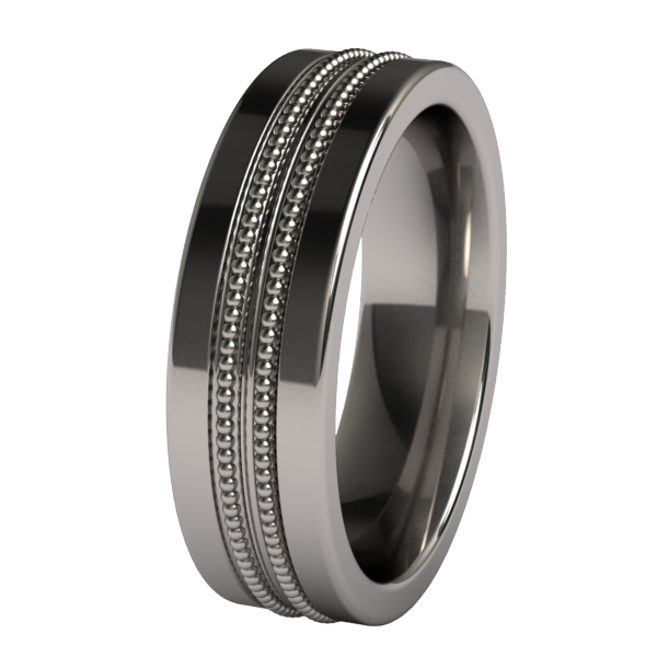Transcend-none-Titanium Rings