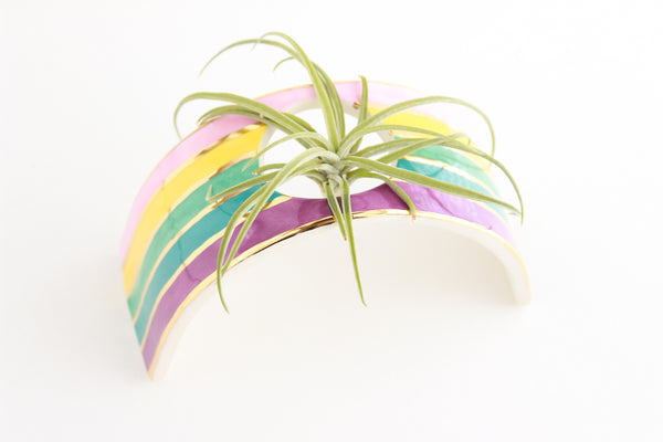 NEW! Rainbow Arched Air Plant Holder