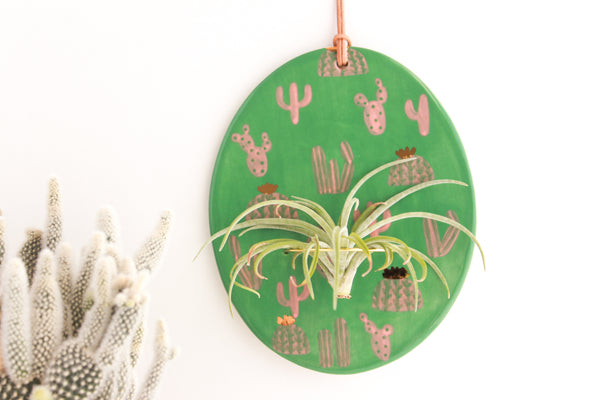 Green and Peach Cactus Air Plant Wall Hanging / Plant Collection
