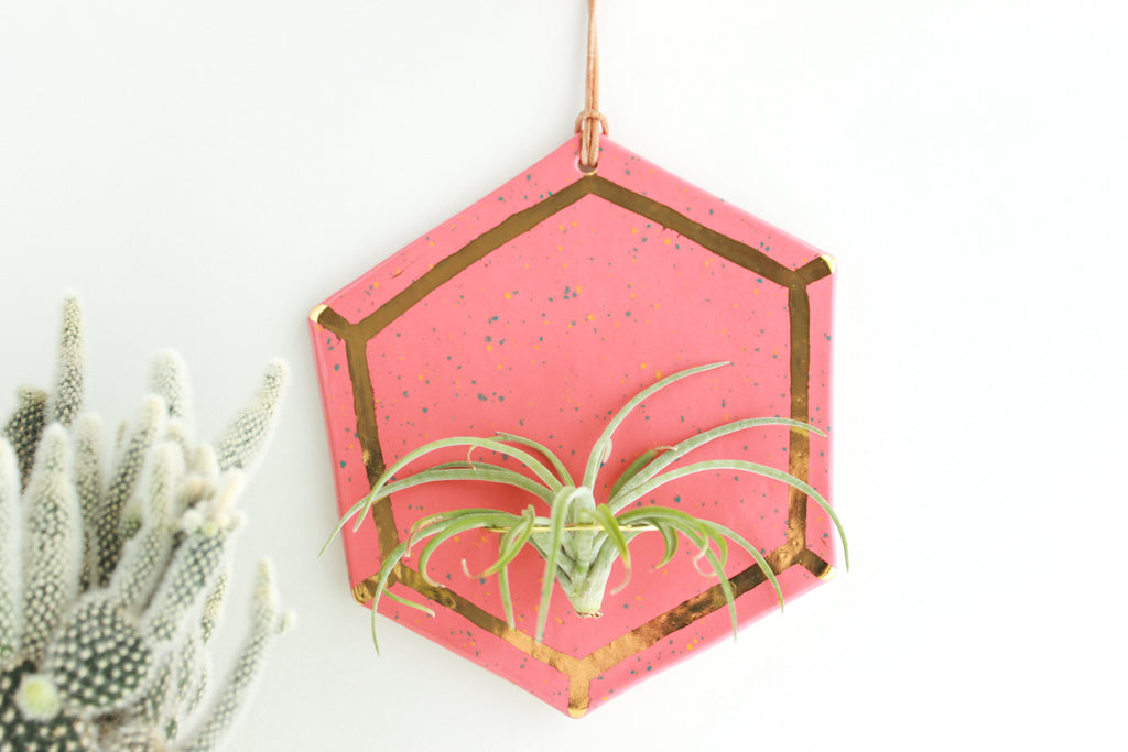 Coral Speckled and Gold Gem Air Plant Wall Hanging