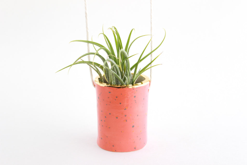 SALE! Gold Rimmed Hanging Tiny Planter/Air Plant Holder