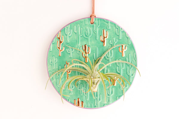 Jade and Purple Cactus Air Plant Wall Hanging / Plant Collection