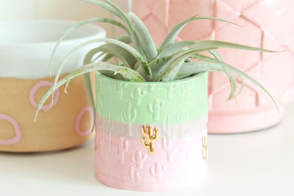 Pink and Mint Colorblock Cactus Mini Planter / Plant Collection