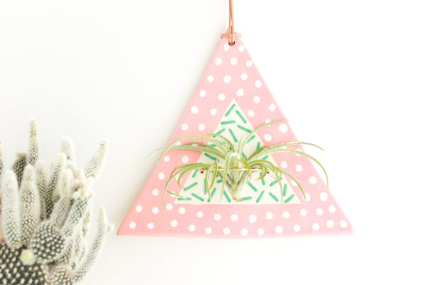 Double Pattern Triangle Air Plant Wall Hanging