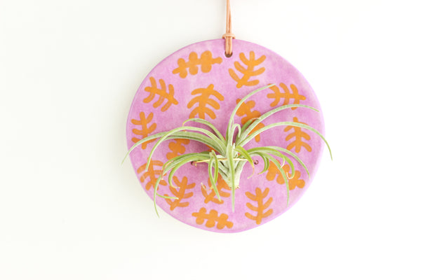 SALE! Purple and Orange Fern Air Plant Wall Hanging / Plant Collection