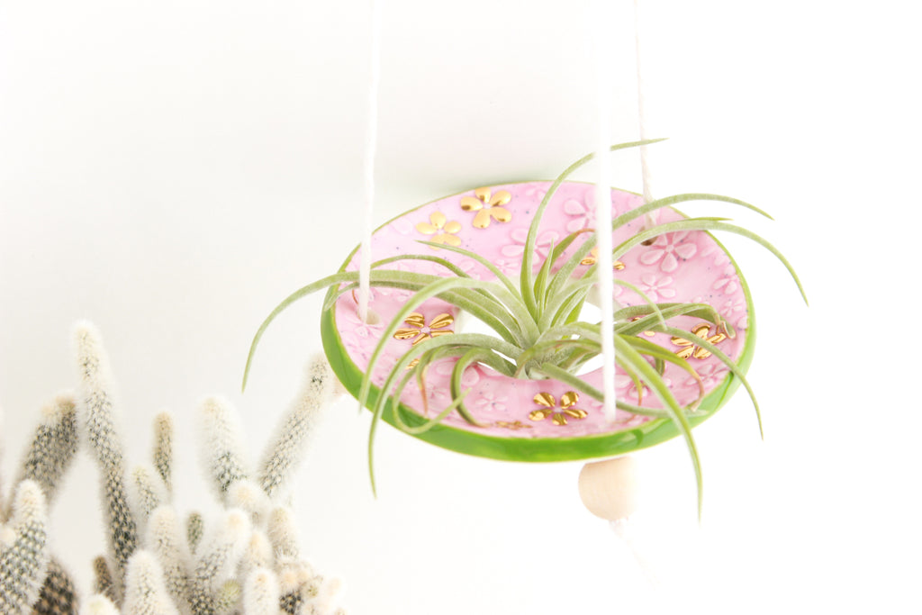 SALE! Pink Speckled and Green Daisy Air Plant Hanger / Plant Collection