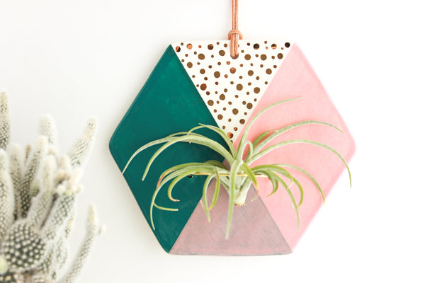 Teal and Peach Hexagon Air Plant Wall Hanging