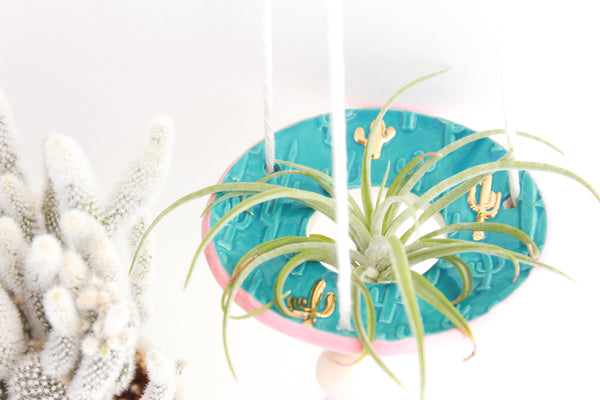 Turquoise and Peach Cactus Air Plant Hanger / Plant Collection