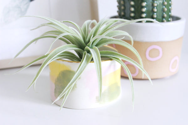 Abstract Short Mini Planter