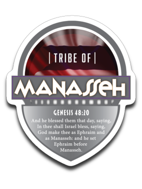Manasseh Decal Grey