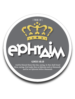 Ephraim Decal Grey Dot