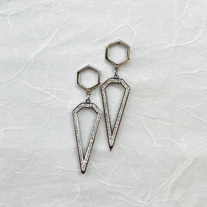 Stainless Steel and Cubic Zirconia Drop Earrings