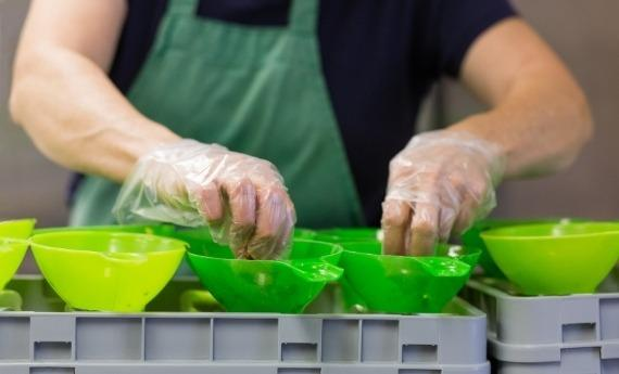 Our Story | Woman Owned Business | Frozen Garden