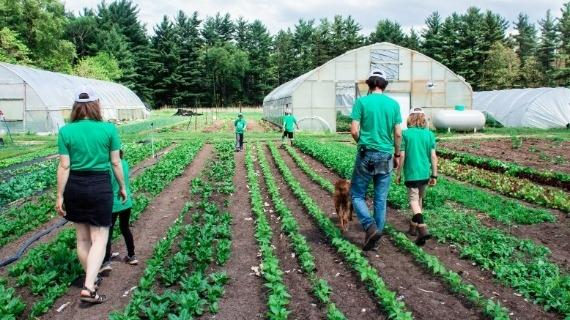 Partnering with Local Farmers
