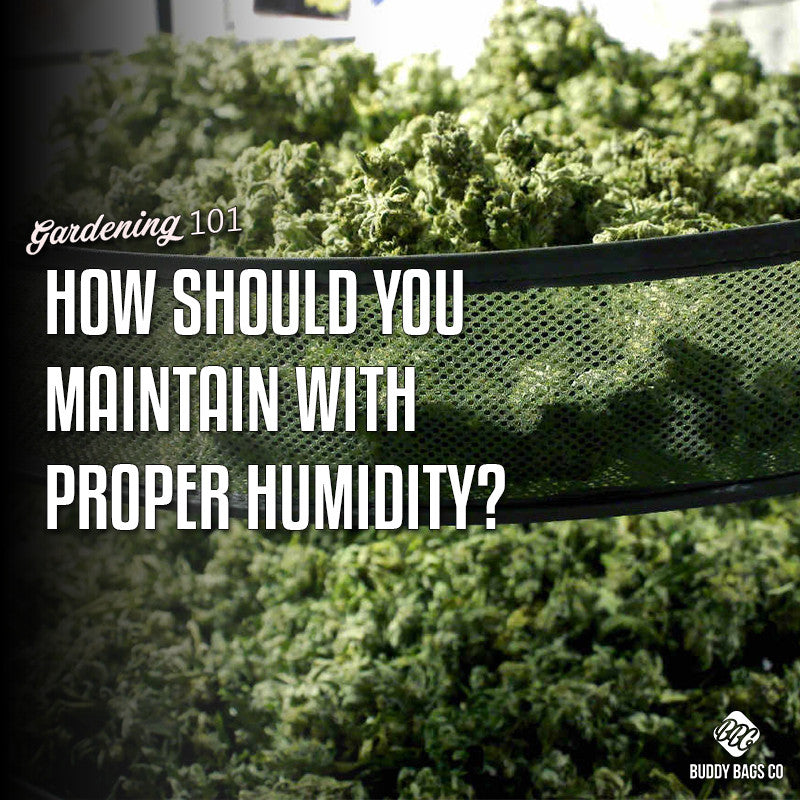 Maintaining Proper Humidity inside Containers