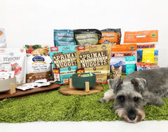 Benefits of Freeze Dried Dog Treats