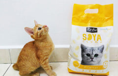 Kit Cat Soya Clump Cat Litter Review