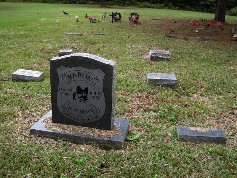 Pet Cremation Services In Singapore
