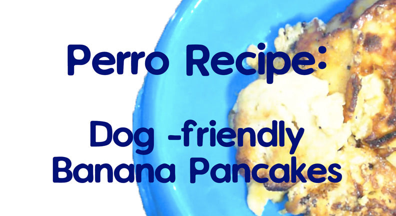 Recipe: Dog-friendly Banana Pancakes