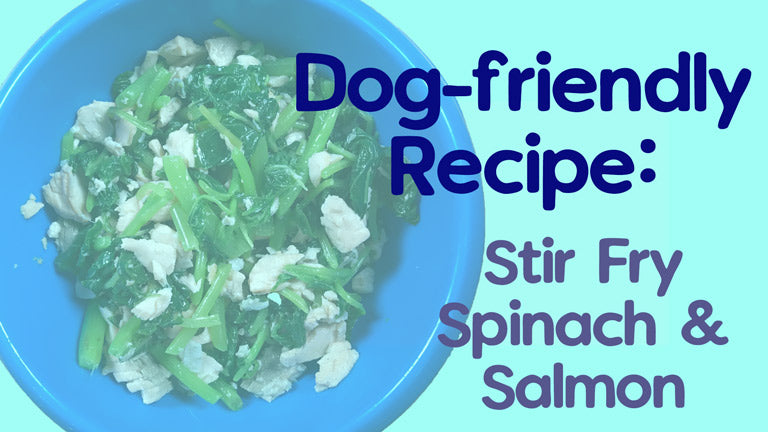 Dog-friendly Recipe: Stir Fry Spinach and Salmon