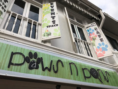 PerroMart Visits Paws N Pans Singapore Dog Cafe Review