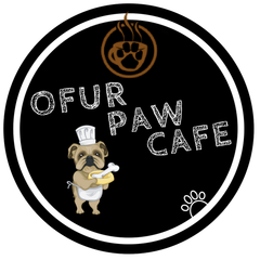 Visit to the Ofur Paw Cafe