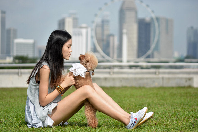 This Singaporean Girl Adopted Dogs from China!
