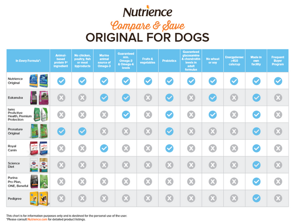 Nutrience Original Review