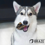 Graze NZ Natural Cattle Hoof Dog Chew 2pcs