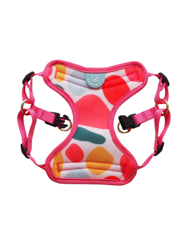 Gentle Pup Candy Callie Easy Harness For Dog (3 Sizes)