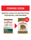 Royal Canin Golden Retriever Adult Dog Dry Food 2 Sizes | Perromart Online Pet Store Singapore