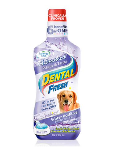 Dental Fresh Plaque & Tartar 17oz (502ml) | Perromart Online Pet Store Singapore