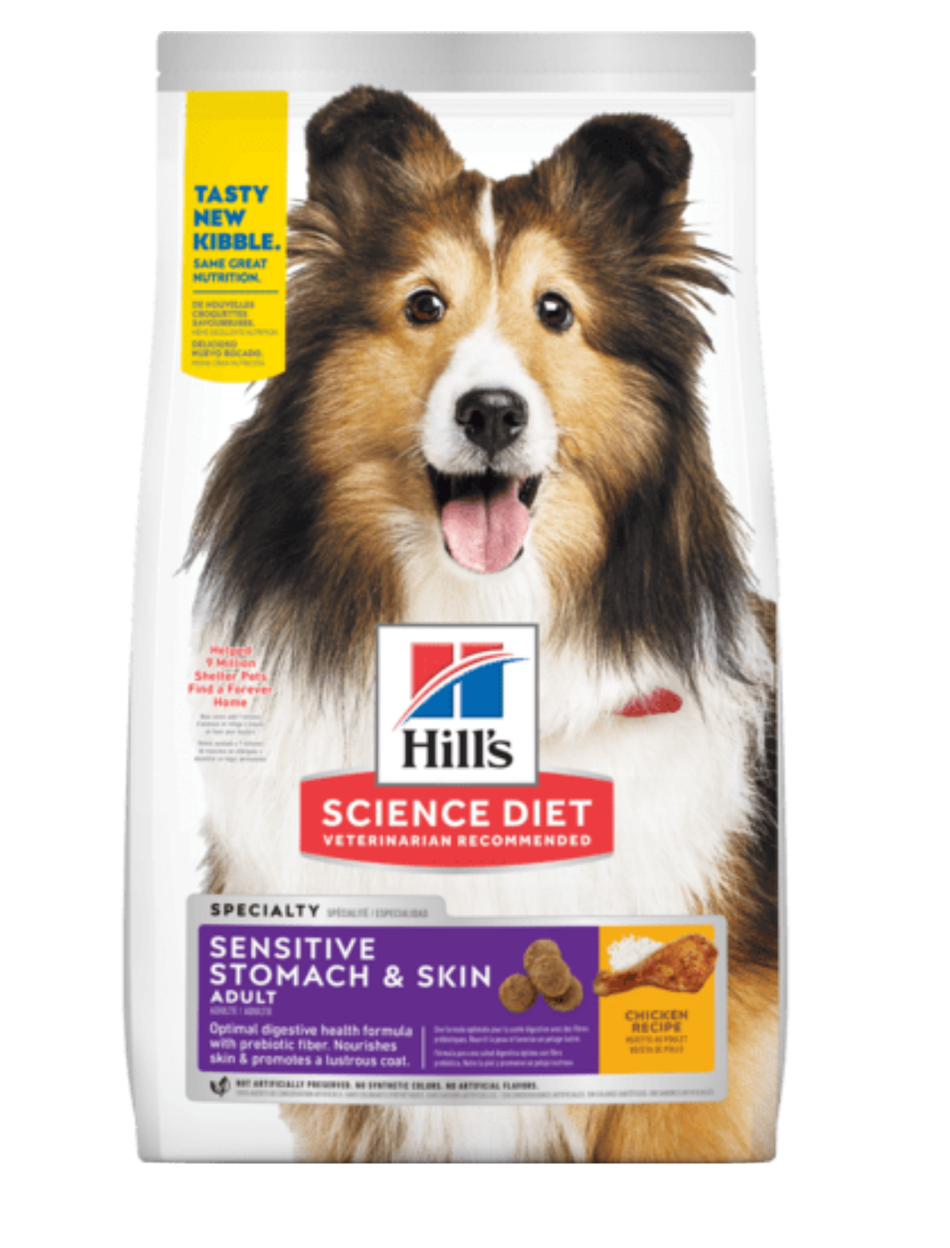 Hill's Science Diet Sensitive Stomach & Skin Adult Dry Dog Food (2 Sizes)