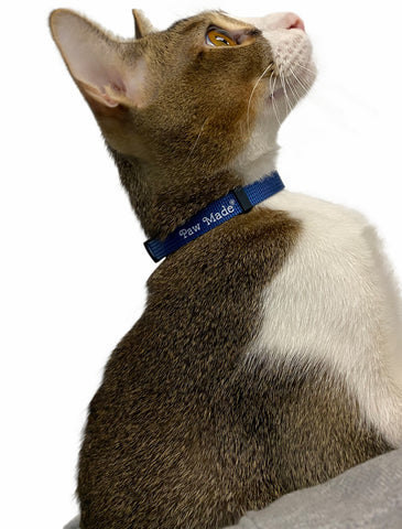 Paw Made Essentials Cat-safe Breakaway Collar Blue with bell