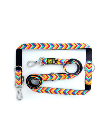 Max & Molly Summer Time Multi-Function Leash | Perromart Online Pet Store Singapore